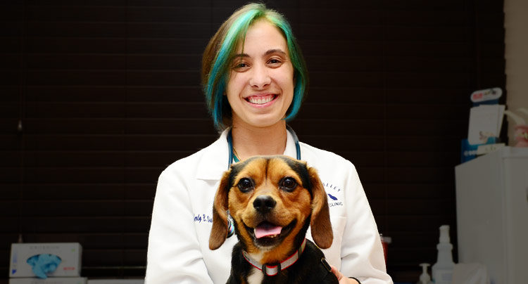 Kimberly Vissichelli, Veterinarian